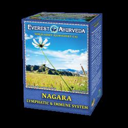 Ajurvedsky čaj Nagara na lymfatický systém a imunitu