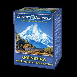 GOKSHURA – Bolesti chrbta a chrbtice