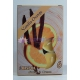 Vanilka-Pomaranč - čajové sviečky 6 ks