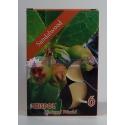 Santalové drevo - čajové sviečky 6 ks
