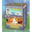 Ajurvédsky čaj HARIDRA - Pooperačná rekonvalescencia