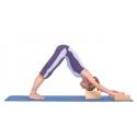 Bloky a držiaky na jogu